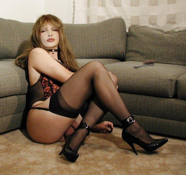 Free Stockings, Transvestite Pictures
