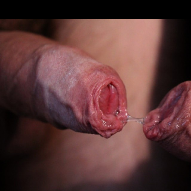 The Love Of Foreskin