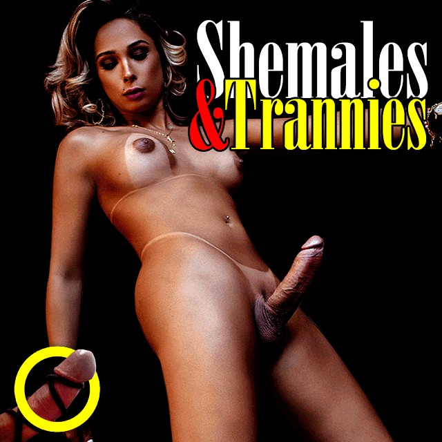Shemales & Trannies