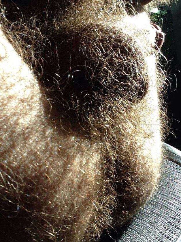 Photo in topic Hairy ballsack by Smitty