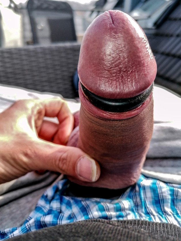 #Phallus #Penis #Erection #Cock #HardCock #ManCock #Cockring-  Post in topic Cocks Up-Close and Personal by JBT Orgasms