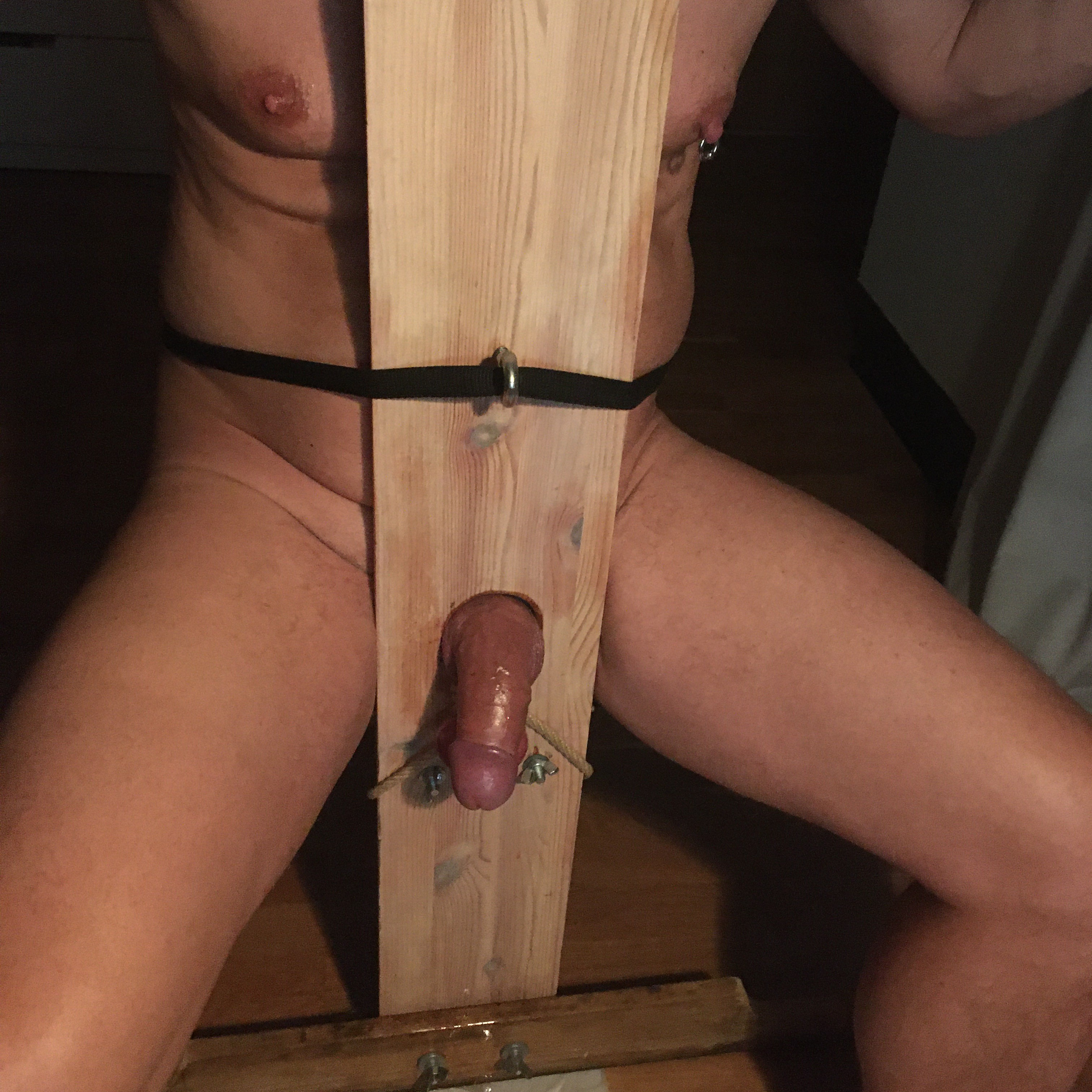 his first time in my milking chair-  Photo in topic Milking Chair by PerfectMatchXXX