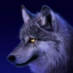 Shadowangrywolf