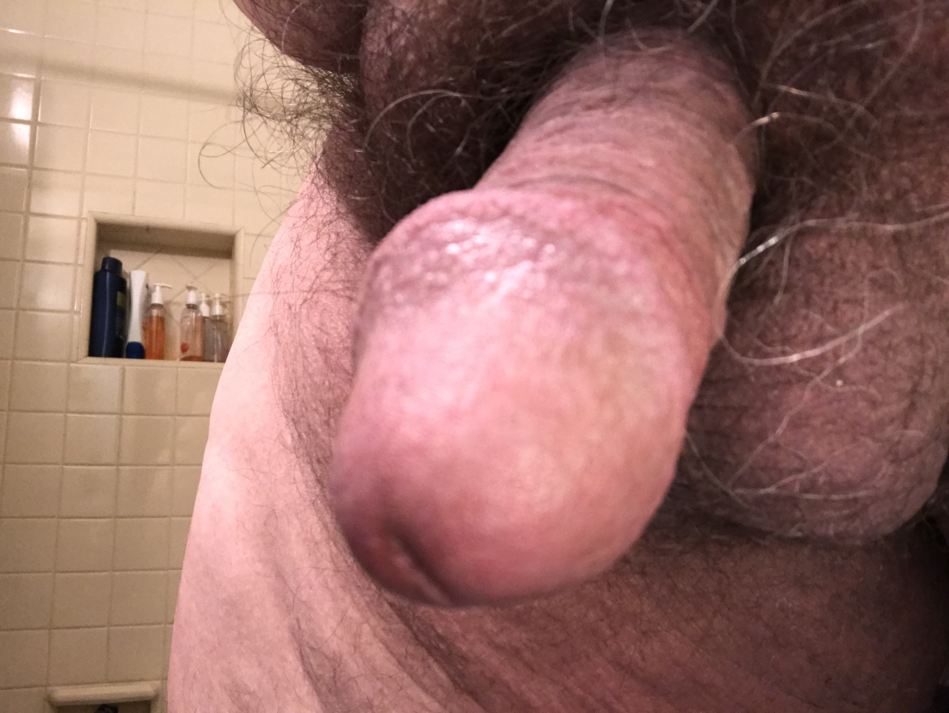 Fuck I'm horny today. Who's with me?-  Album in topic Tumblr refugees by CockShotJoey