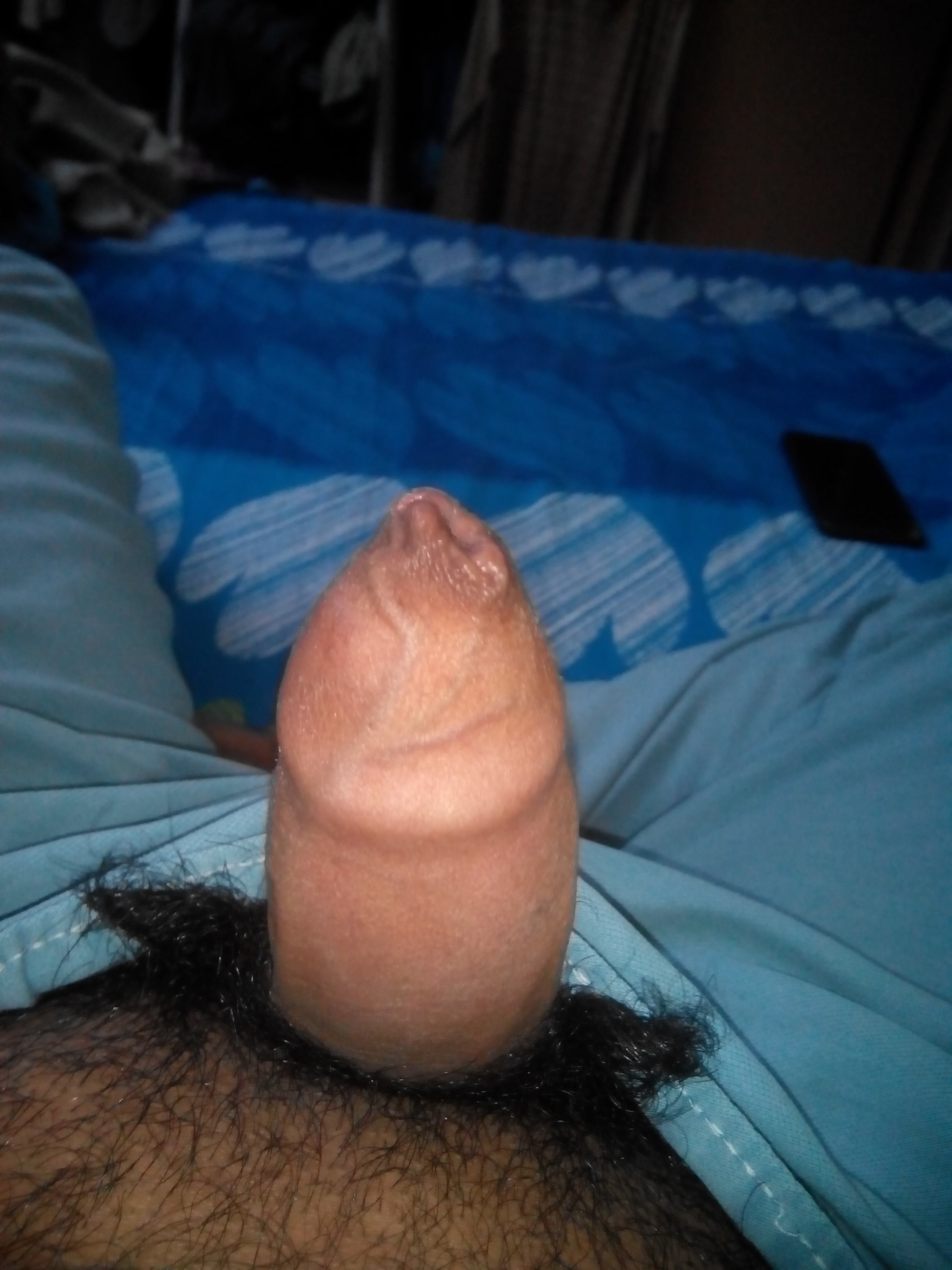 Album in topic Hairy Penis by Pussy Hunter