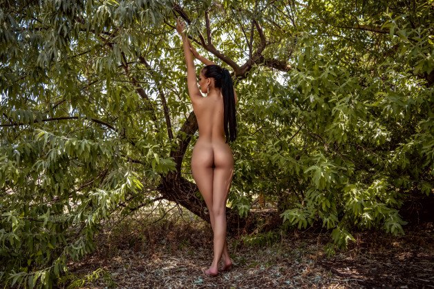 ★ #I will enter the forest #now🤍 ★ #You can join me if you...