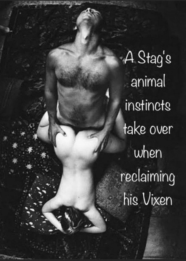 Reclaiming your Vixen is to remind her that she is yours!...